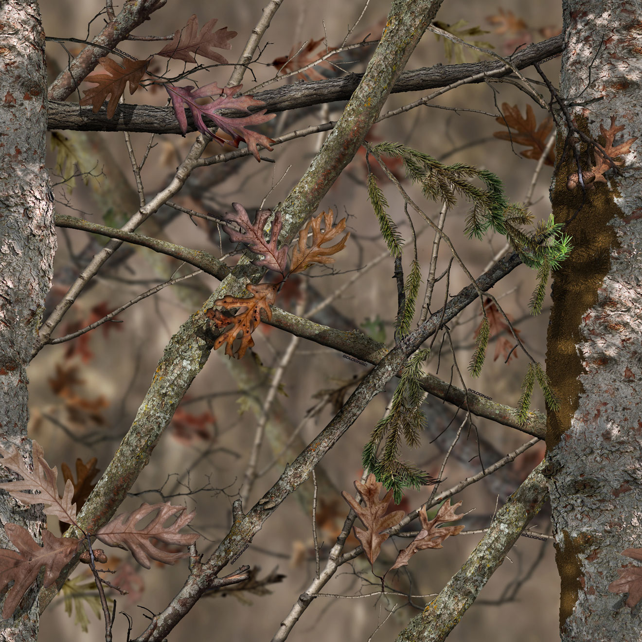 camouflage chasse