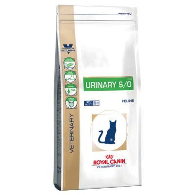croquette urinary