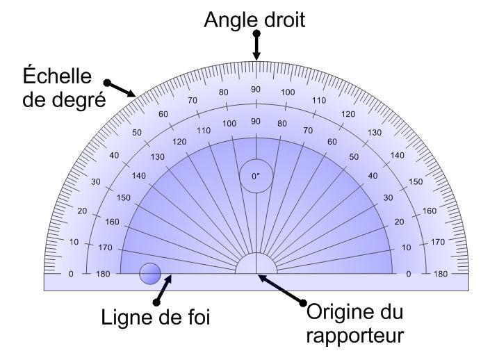 rapporteur d angle