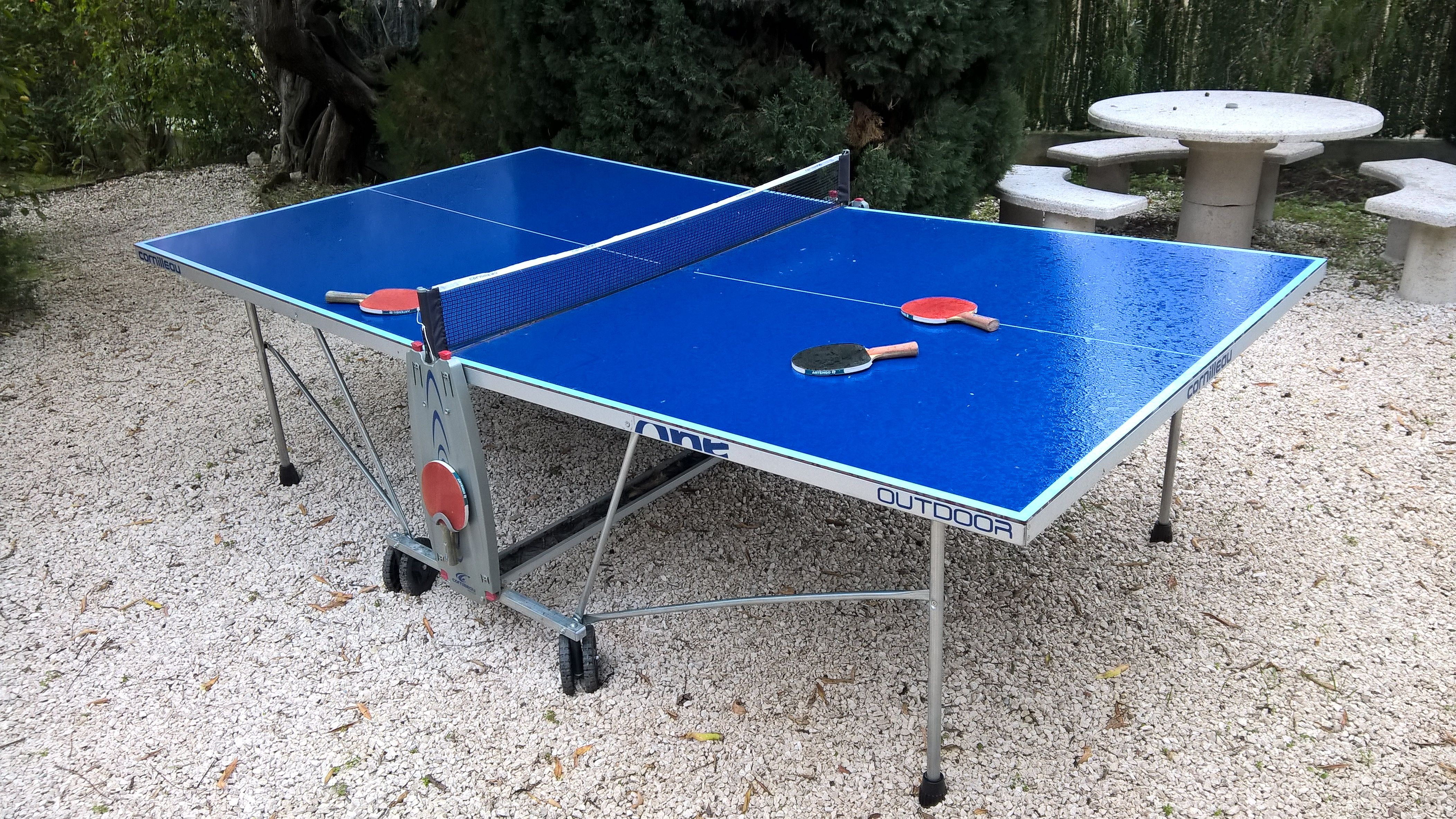 table de ping pong occasion