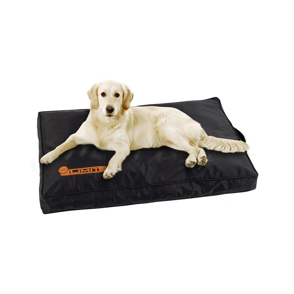 tapis pour chien
