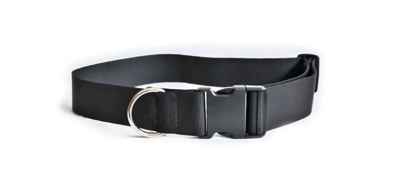 ceinture canicross