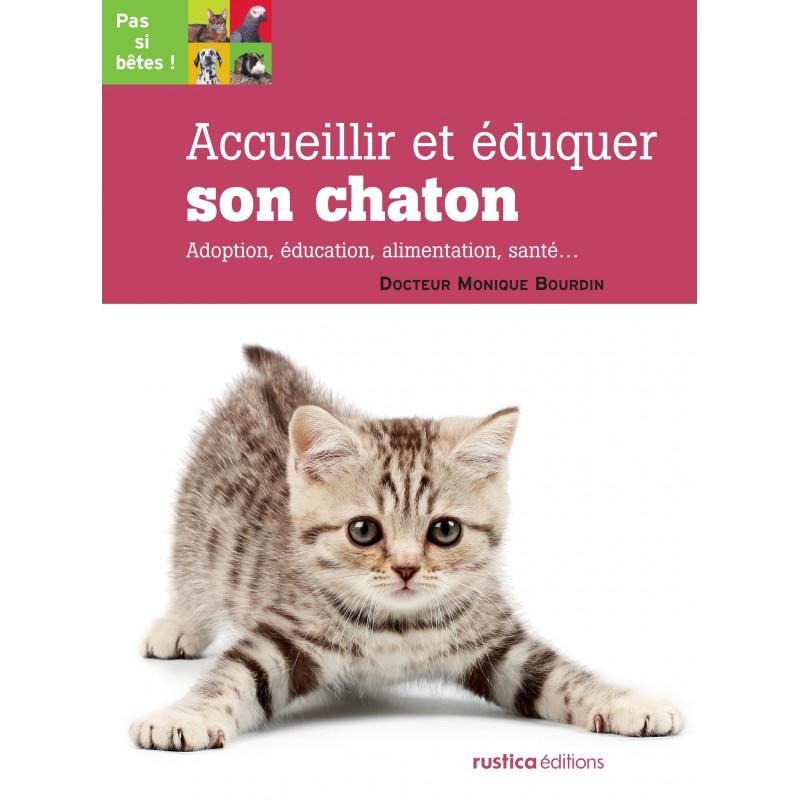 eduquer un chaton