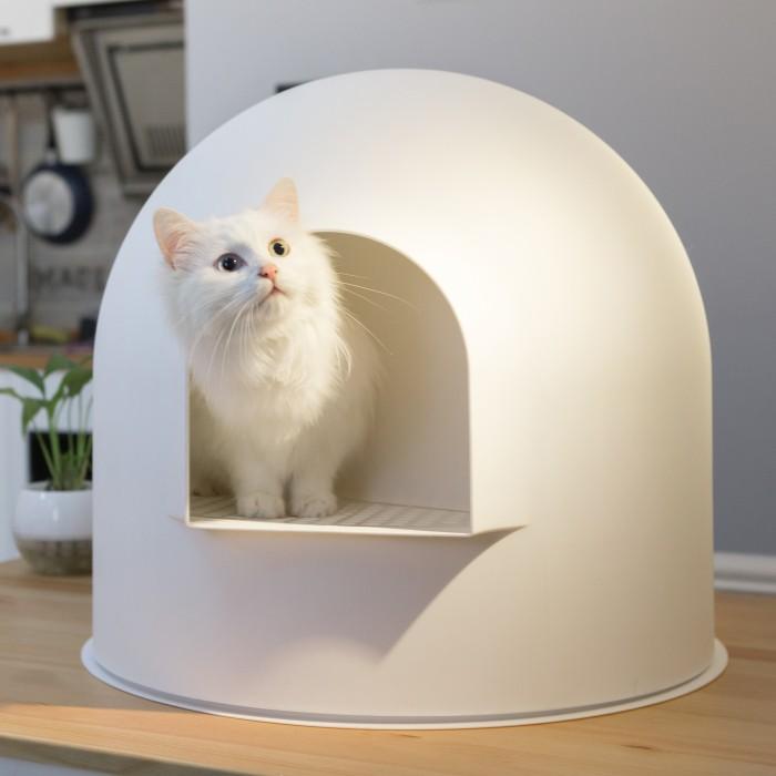litiere de chat