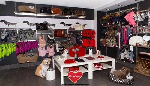 magasin pour chien