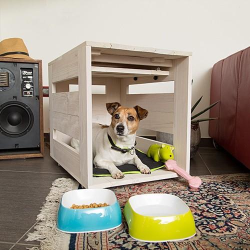 niche interieur chien