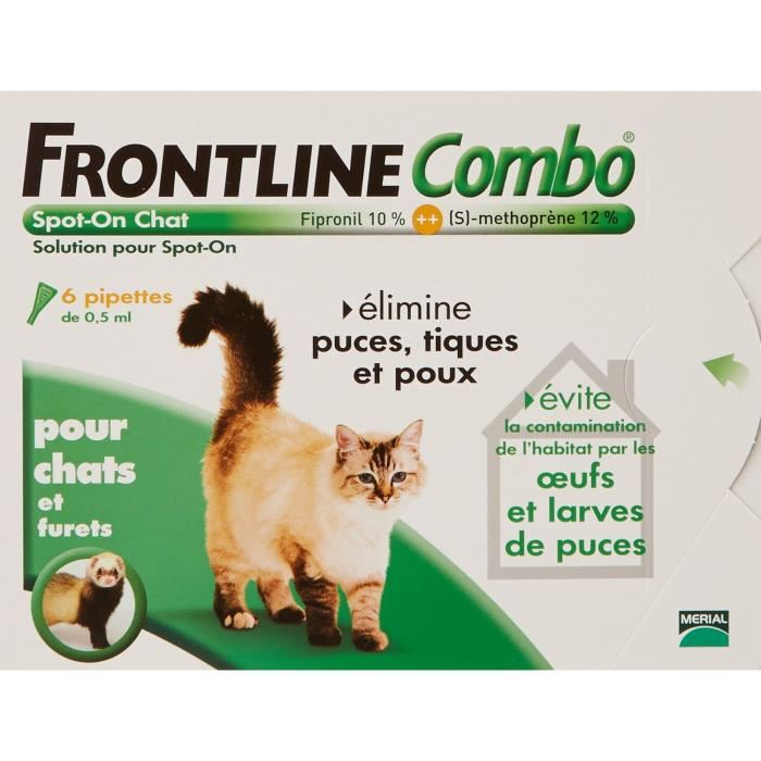 pipette puce chat