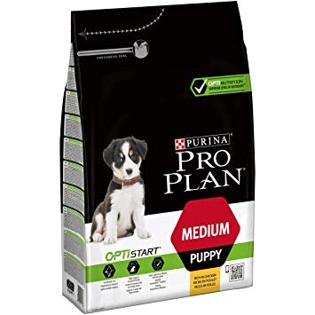 pro plan medium puppy