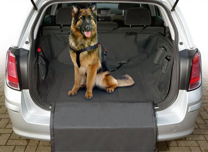 protection de coffre pour chien